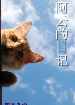 阿云的日记(网王)