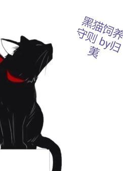 黑猫饲养守则